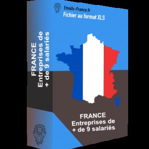 France + de 9 salariés